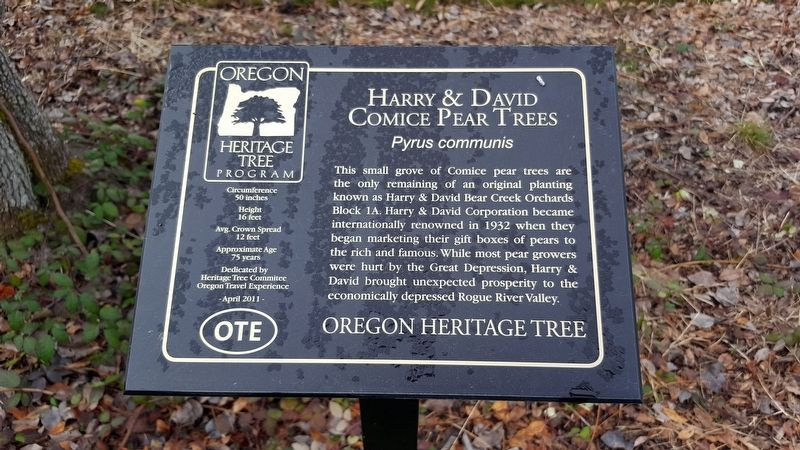Harry & David Comice Pear Trees Marker image. Click for full size.