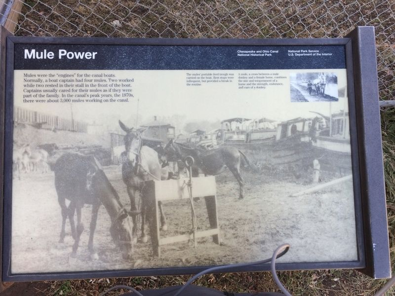 Mule Power Marker image. Click for full size.