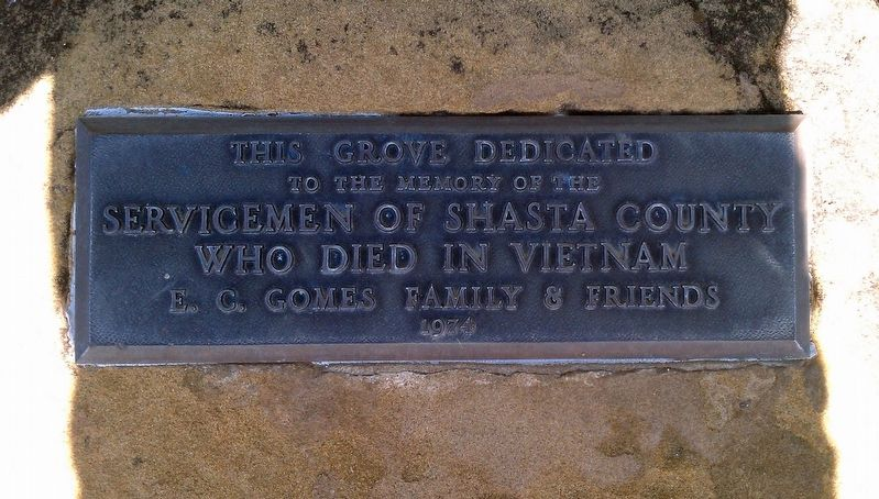 Vietnam War plaque image. Click for full size.