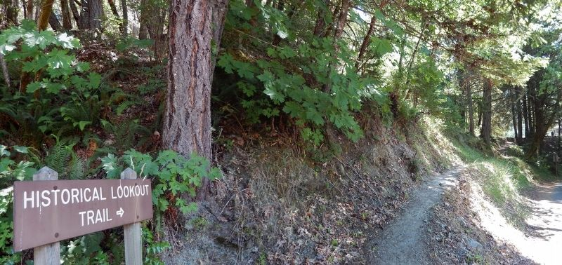 Red Mountain Lookout Trail (<i>short trail from Ranger Station to Lookout</i>) image. Click for full size.