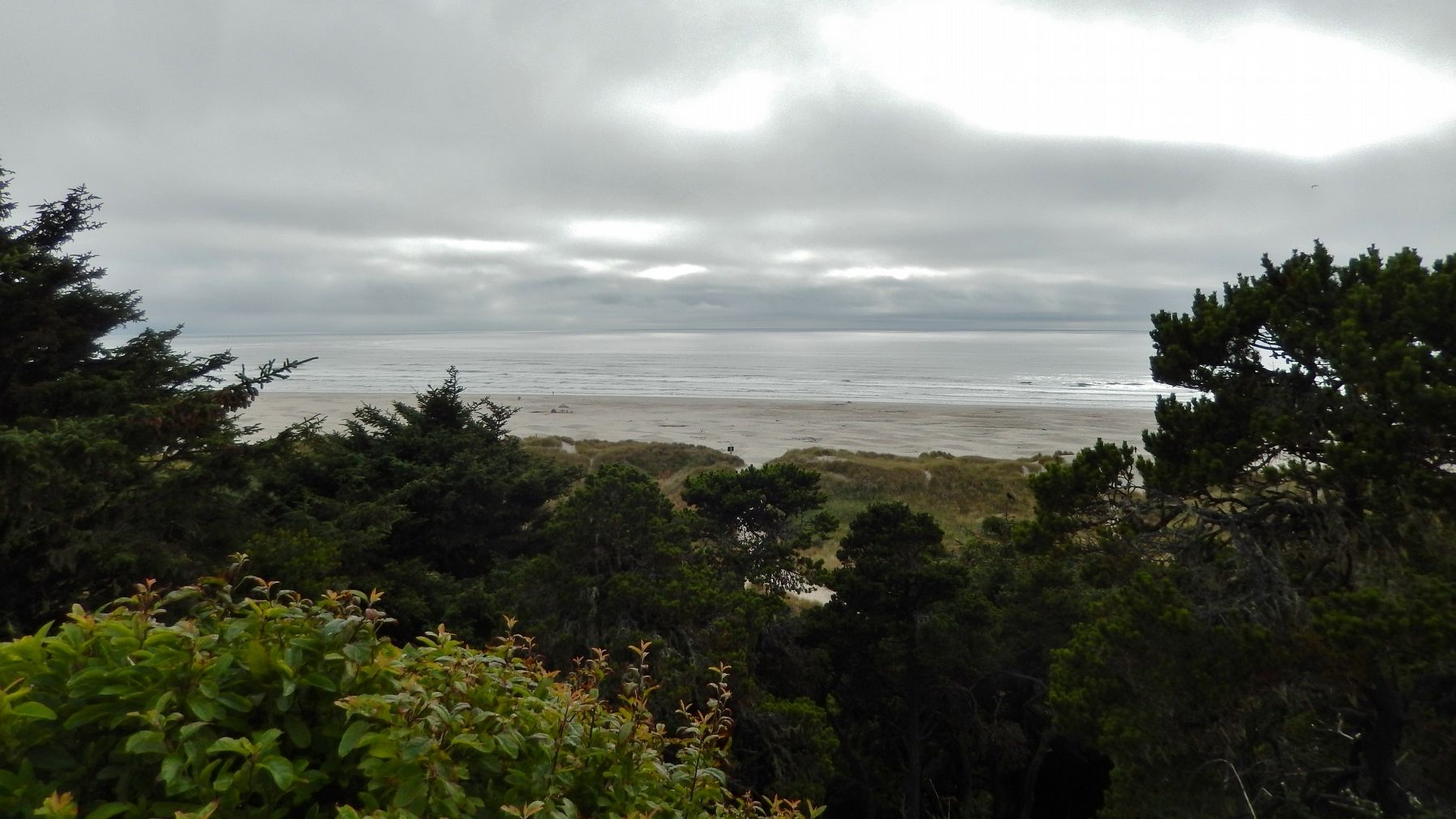 Pacific Ocean (<i>view west from marker</i>) image. Click for full size.