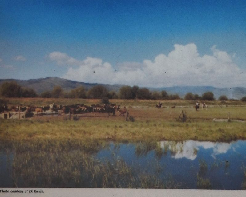 Marker detail: ZX Ranch image. Click for full size.
