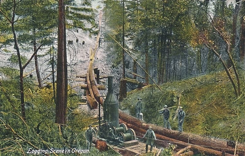 <i>Logging Scene in Oregon</i>, showing a steam donkey in use image. Click for full size.