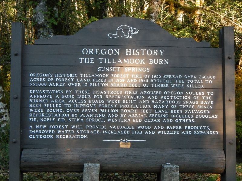 The Tillamook Burn Marker image. Click for full size.