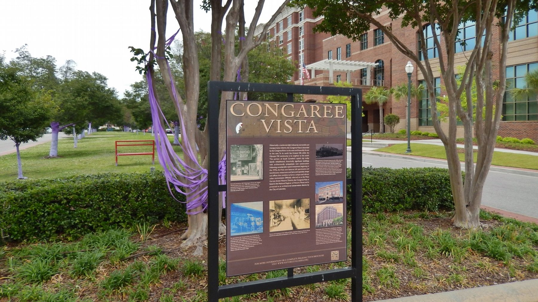 Congaree Vista Marker (<i>wide view</i>) image. Click for full size.