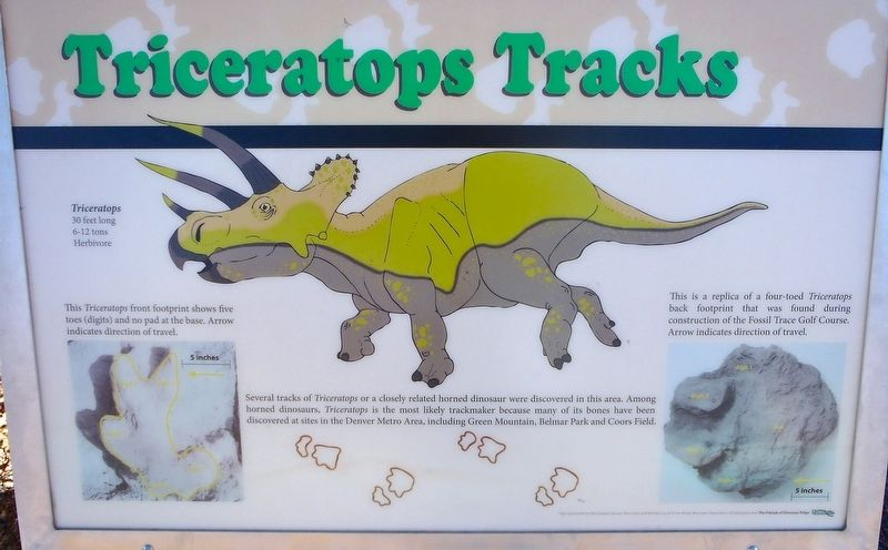 Triceratops Tracks Marker image. Click for full size.