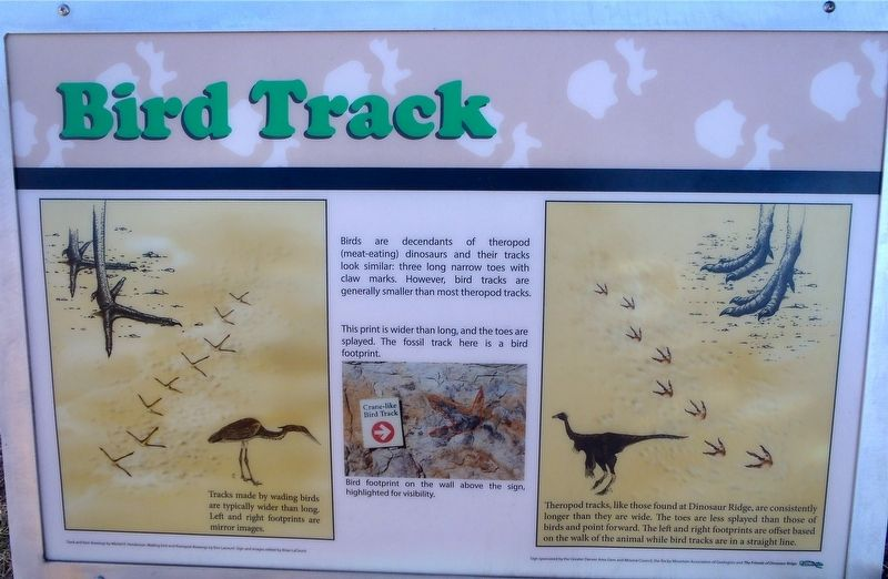 Bird Track Marker image. Click for full size.