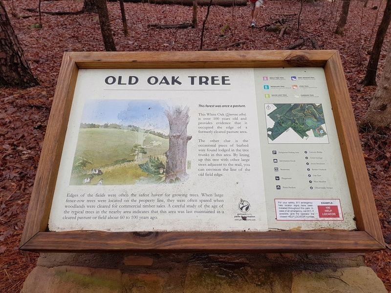 Old Oak Tree Marker image. Click for full size.