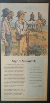 Sage or Scoundrel? panel image. Click for full size.