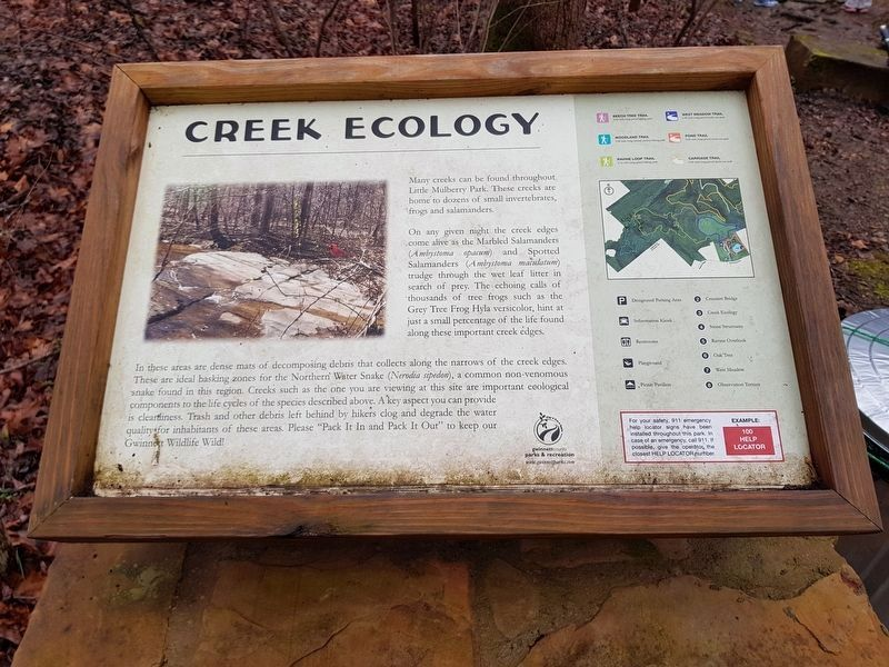 The additional, nearby Creek Ecology Marker image. Click for full size.