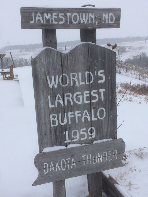 World's Largest Buffalo Sign image. Click for full size.