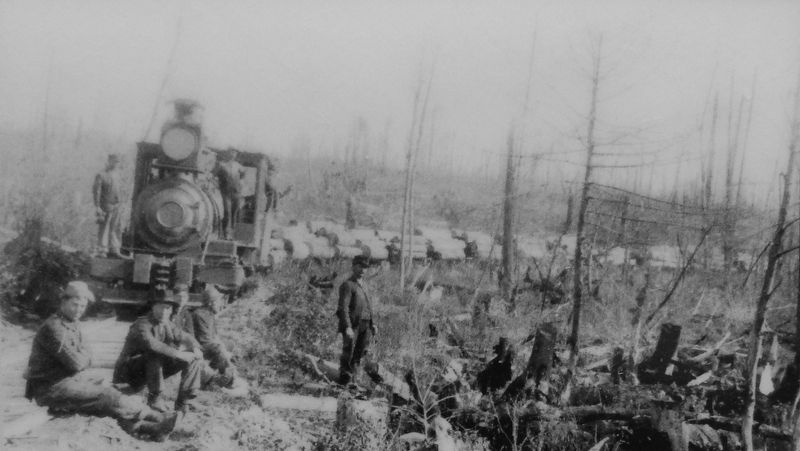 Marker detail: logging train leaving from deforested hillsides image. Click for full size.