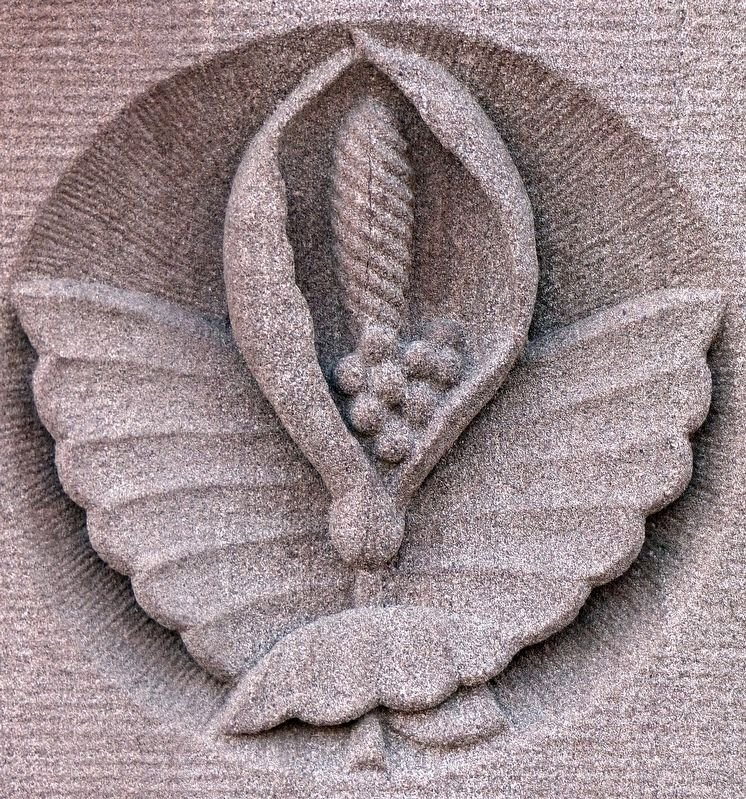 Calla Lilly<br>Architectural Detail image. Click for full size.