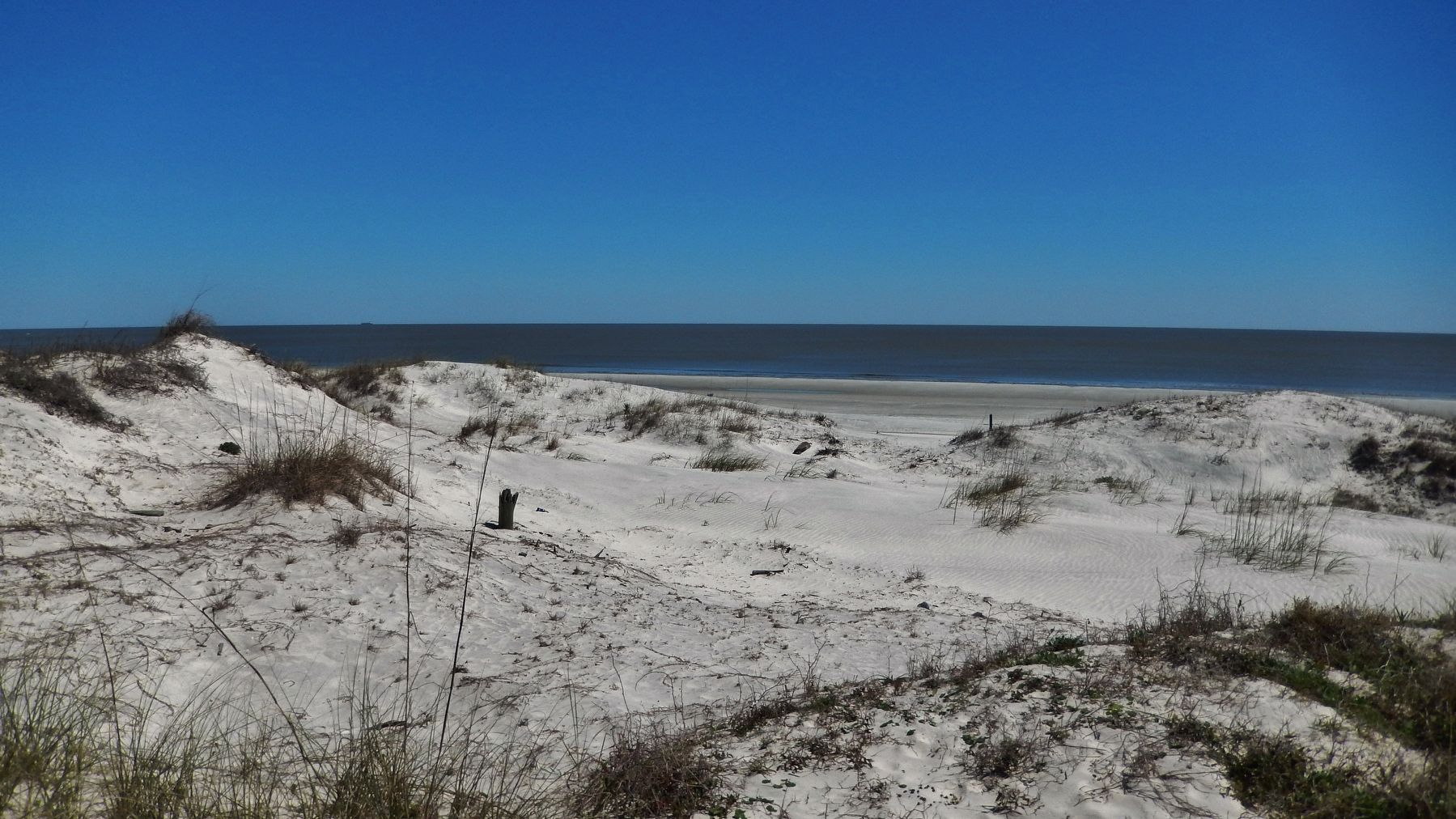 Sand Dunes (<i>view east from marker</i>) image. Click for full size.