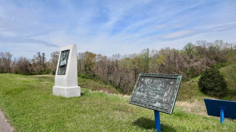 U☆S 1st Battalion 13th U.S. Infantry Marker looking west. image. Click for full size.
