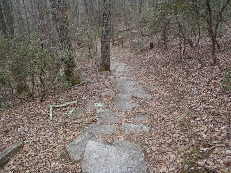 The 0.2 mile blue blazed trail to the Wolf Den. image. Click for full size.