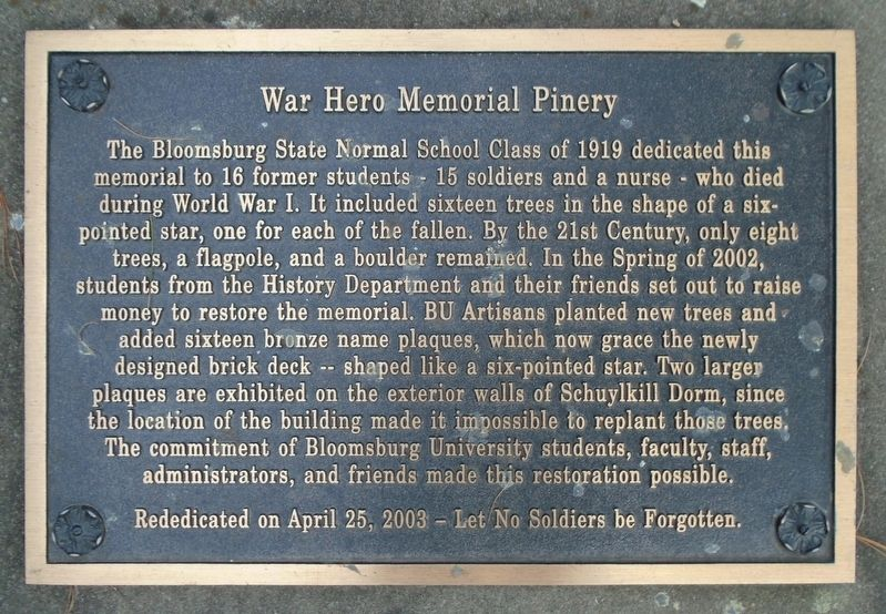 War Hero Memorial Pinery Marker image. Click for full size.