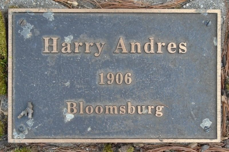 War Hero Memorial Pinery Andres Marker image. Click for full size.