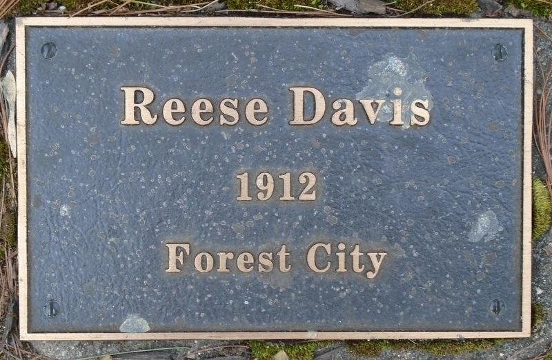 War Hero Memorial Pinery Davis Marker image. Click for full size.