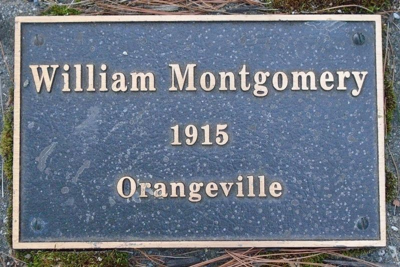 War Hero Memorial Pinery Montgomery Marker image. Click for full size.