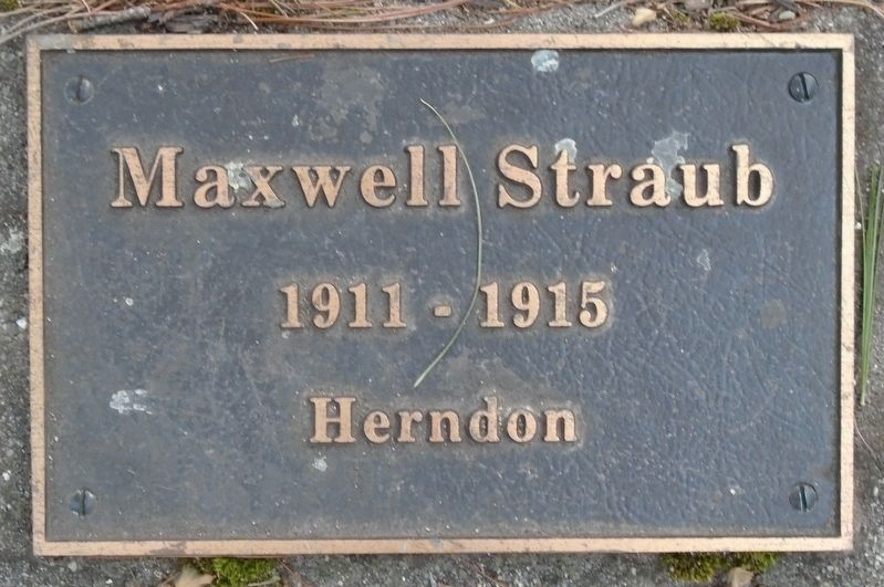 War Hero Memorial Pinery Straub Marker image. Click for full size.
