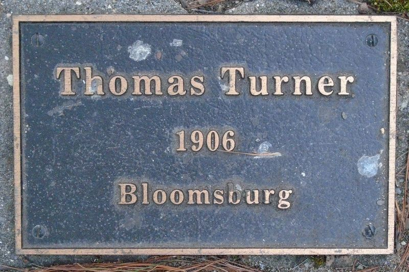 War Hero Memorial Pinery Turner Marker image. Click for full size.