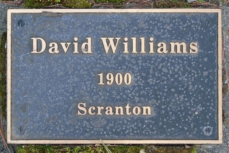 War Hero Memorial Pinery Williams Marker image. Click for full size.