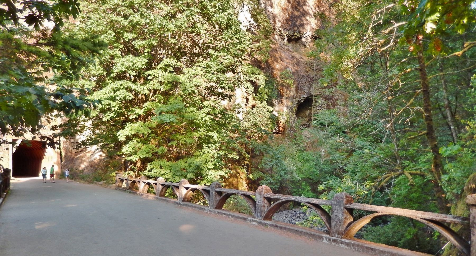 Oneonta Gorge Creek Bridge leading into Tunnel image. Click for full size.
