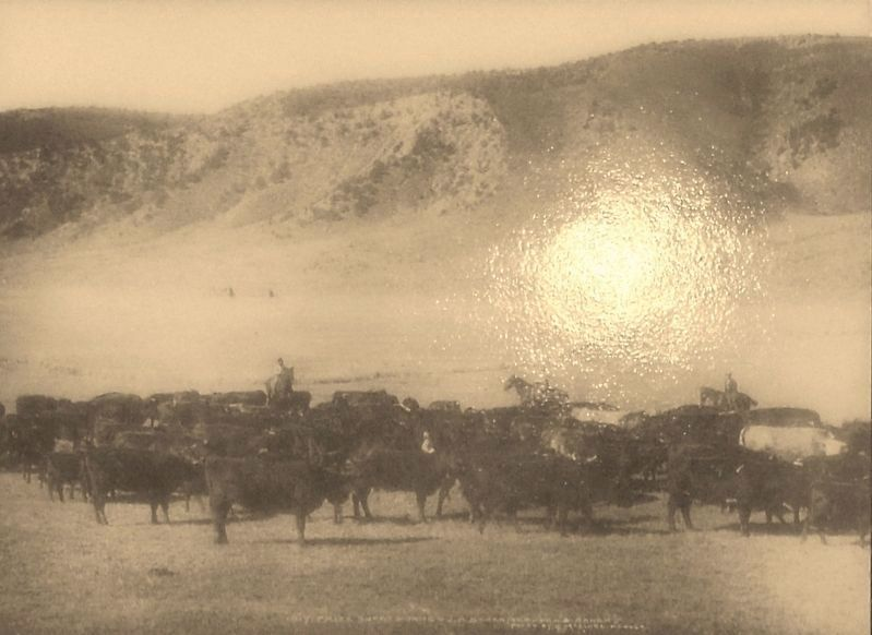 Marker detail: Cattle on the Range image. Click for full size.