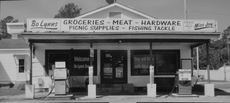 Marker detail: Bo Lynn&#39;s Grocery (<i>front view</i>) image. Click for full size.