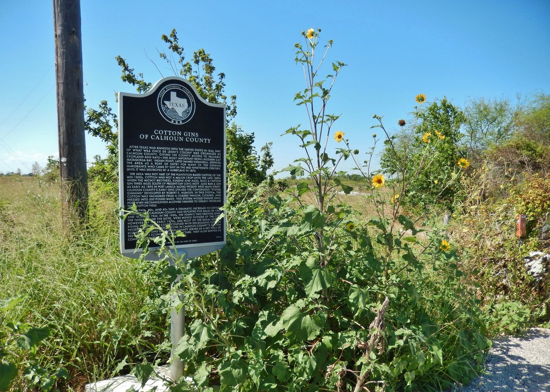 Cotton Gins of Calhoun County Marker (<i>wide view to east</i>) image. Click for full size.