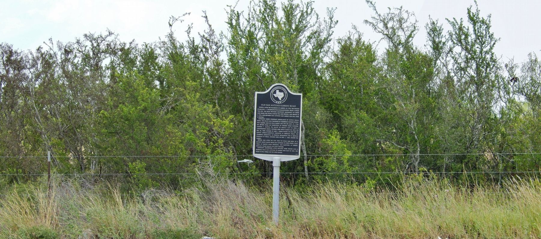 Old San Antonio-Laredo Road Marker (<i>wide view</i>) image. Click for full size.