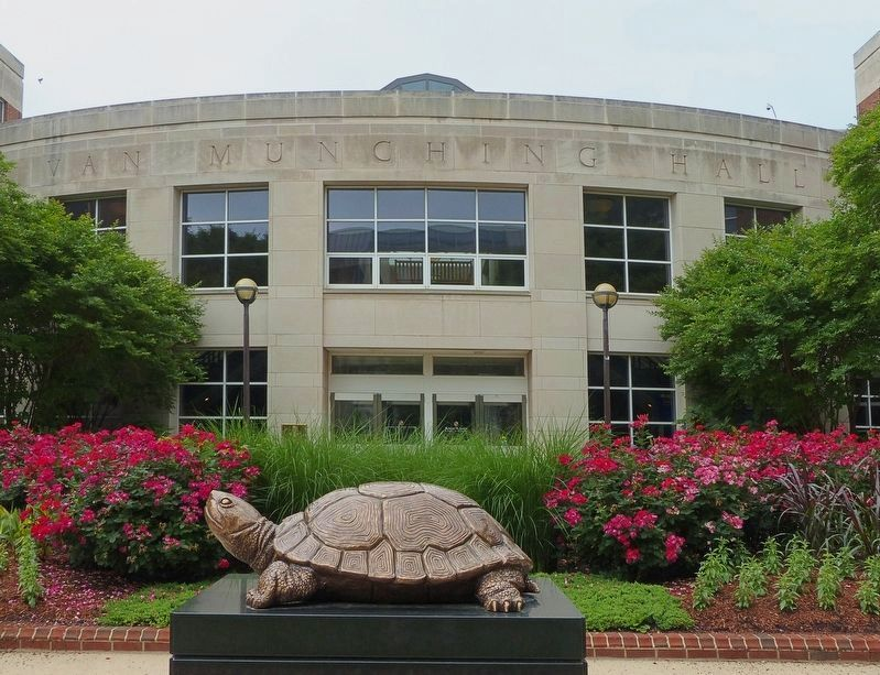 Testudo<br>at Van Munching Hall image. Click for full size.