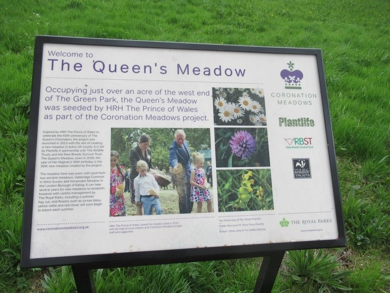 The Queen's Meadow Marker image. Click for full size.