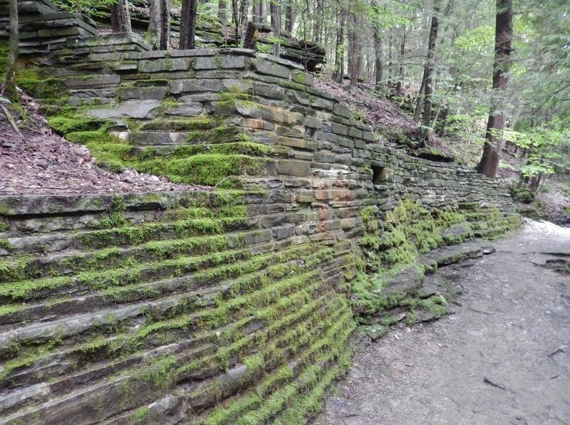 Gorge Retaining Wall (<i>C.C.C. stonework at Buttermilk Falls State Park</i>) image. Click for full size.