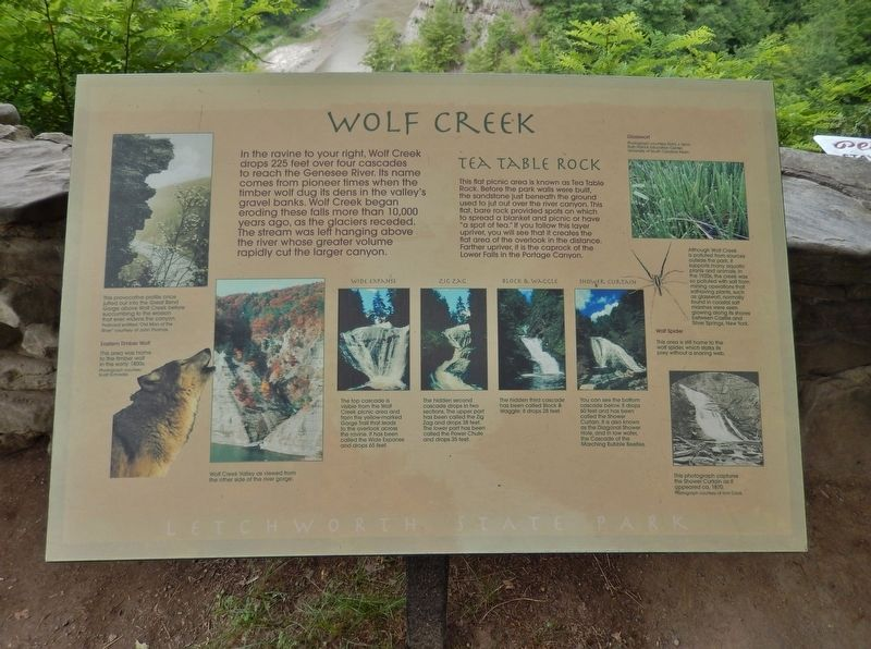Wolf Creek Marker (<i>wide view</i>) image. Click for full size.