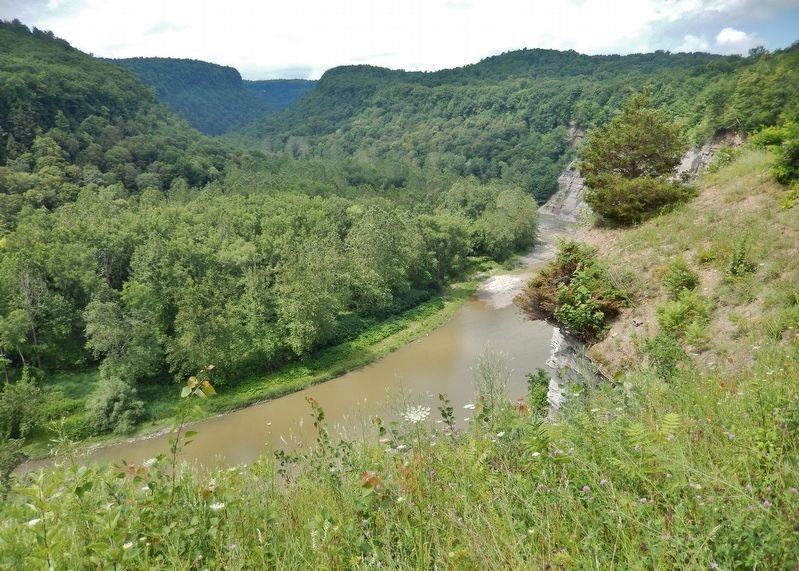 Genesee River Canyon (<i>view south from marker</i>) image. Click for full size.