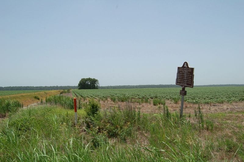 Mound Plantation Marker image. Click for full size.