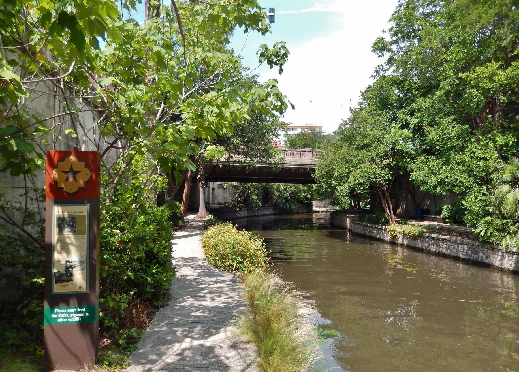 The San Antonio River Marker (<i>wide view; looking north along river to Richmond Avenue Bridge</i>) image. Click for full size.