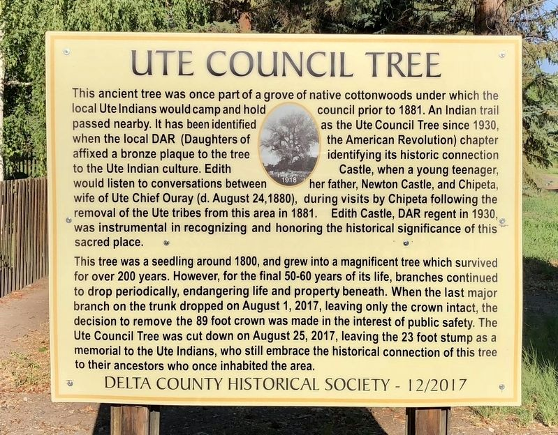 Ute Council Tree Marker image. Click for full size.