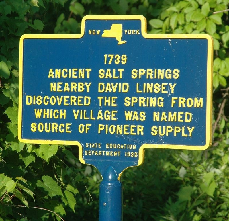 Ancient Salt Springs Marker image. Click for full size.
