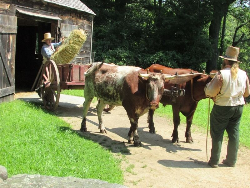 Farmers in Sturbridge Village image. Click for full size.
