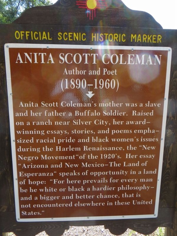 Anita Scott Coleman Marker image. Click for full size.