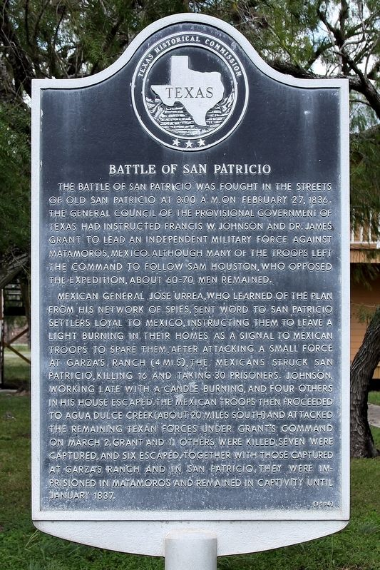 Battle of San Patricio Marker image. Click for full size.