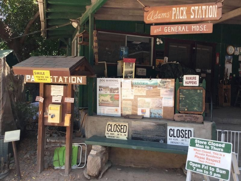 Adams Pack Station and General Store image. Click for full size.