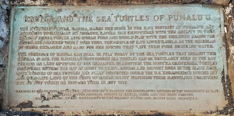 Kauila and the Sea Turtles of Punalu'u Marker image. Click for full size.