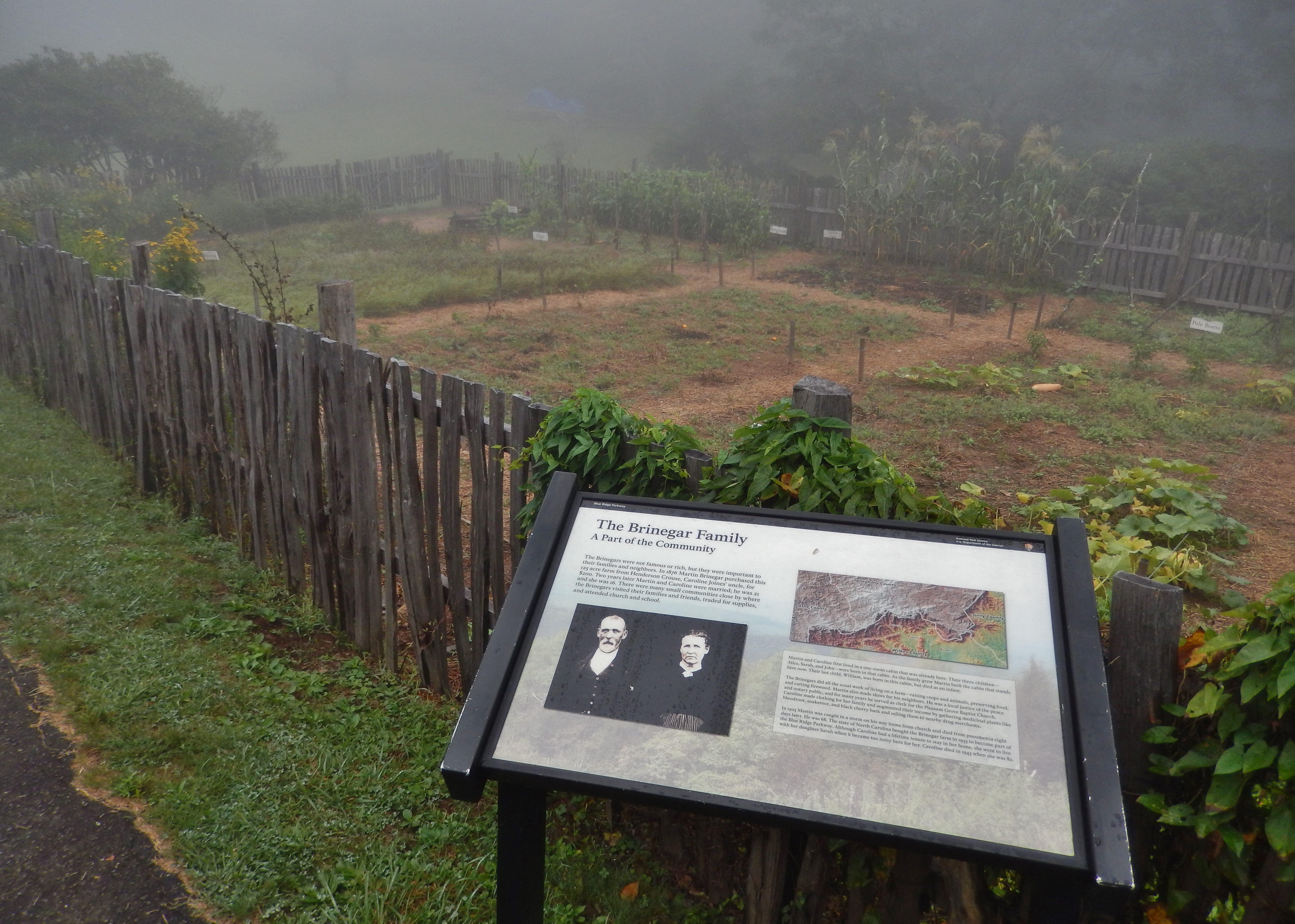 The Brinegar Family Marker (<i>wide view; Brinegar garden in background</i>)