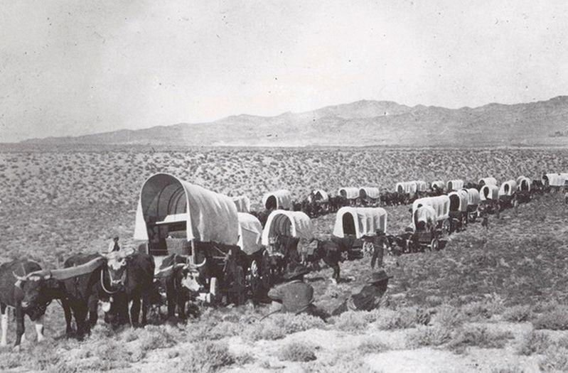 Covered wagons on the Oregon Trail image. Click for full size.