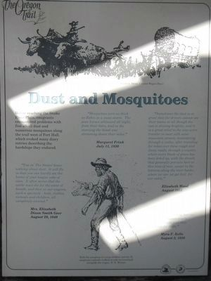 Dust and Mosquitoes panel image. Click for full size.