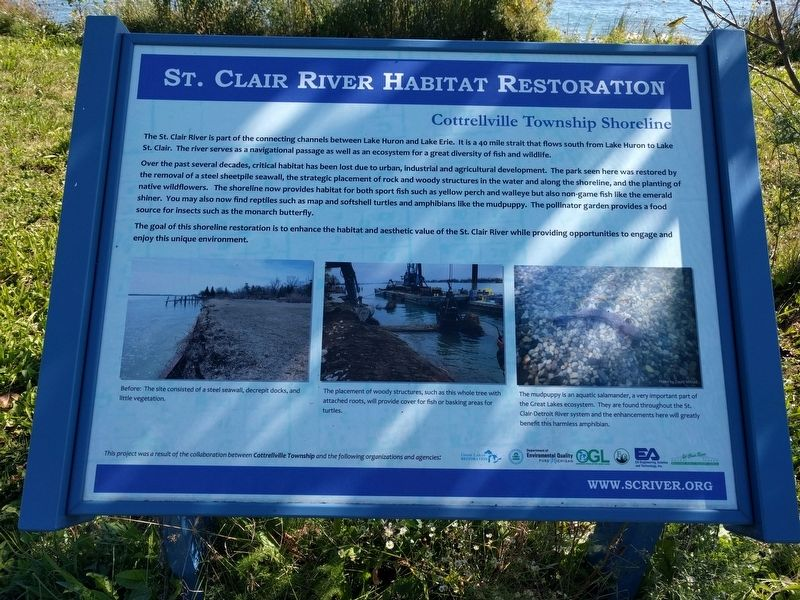 St. Clair River Habitat Restoration: Cottrellville Township Shoreline Marker image. Click for full size.